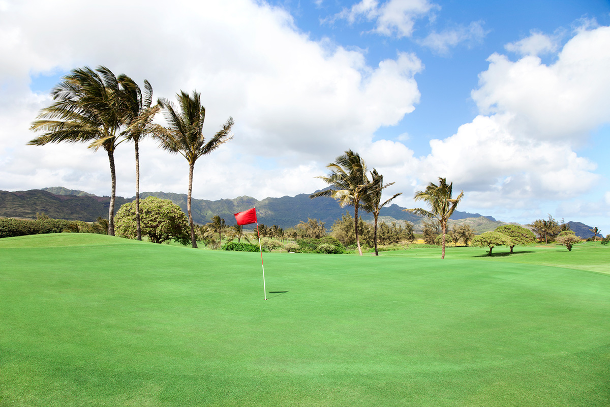 Knockdown golf shots in windy course conditions